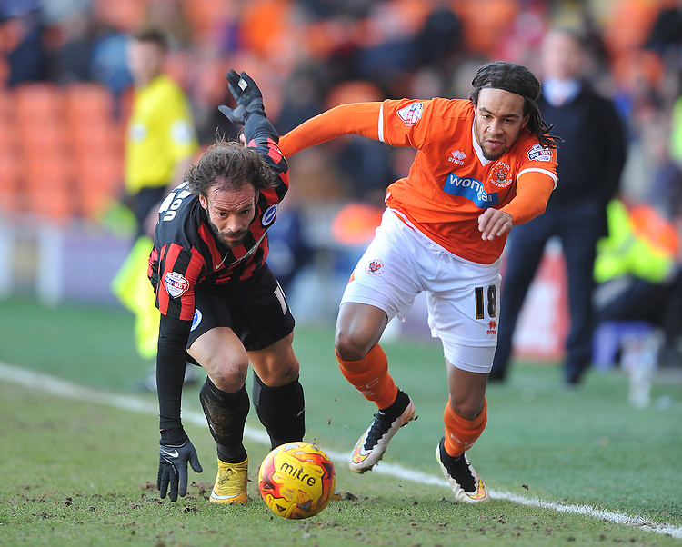 Blackpool's Charles Dunne and Brighton and Hove Albion's I&ntilde;igo Calder&oacute;n battle for the ball<br /> <br /> Photographer Dave Howarth/CameraSport<br /> <br /> Football - The Football League Sky Bet Championship - Blackpool v Brighton and Hove Albion - Saturday 31st January 2015 - Bloomfield Road - Blackpool<br /> <br /> &copy; CameraSport - 43 Linden Ave. Countesthorpe. Leicester. England. LE8 5PG - Tel: +44 (0) 116 277 4147 - admin@camerasport.com - www.camerasport.com