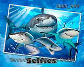 Howard, SELFIES, paintings+++++,GBHR894,#Selfies#, EVERYDAY ,sharks,maritime