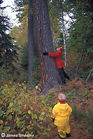 Woman hugging a tree in the woods with her little girl looking on
