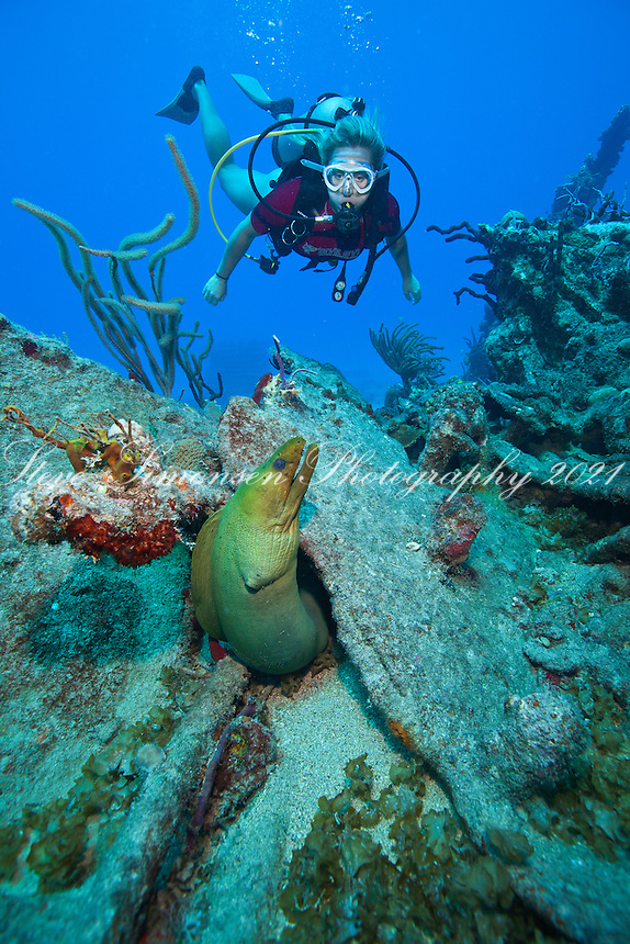 Savannah Goodman and a green moray.Wreck of The Rhone.Salt Island, BVI