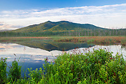 Pondicherry Wildlife Refuge - Cherry Mountain from Moorhen Marsh along the Presidential Range Rail Trail / Cohos Trail in Jefferson, New Hampshire USA during the spring months