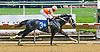 Fleetwood Star winning at Delaware Park on 5/20/15