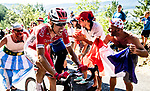 Anthony Perez (FRA) Cofidis feels the pain on the final climb passing Obelix character during Stage 14 of the 2018 Tour de France running 188km from Saint-Paul-Trois-Chateaux to Mende, France. 21st July 2018. <br /> Picture: ASO/Alex Broadway | Cyclefile<br /> All photos usage must carry mandatory copyright credit (&copy; Cyclefile | ASO/Alex Broadway)