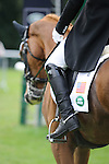 Marilyn Little [USA] riding RF Demeter during the Dressage phase of the 2014 Land Rover Burghley Horse Trials held at Burghley House, Stamford, Lincolnshire
