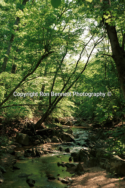 Great Falls Park stream trail on Potomac River Commonwealth of Virginia, Fine Art Photography by Ron Bennett, Fine Art, Fine Art photography, Art Photography, Copyright RonBennettPhotography.com ©