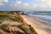 Daenemark, Juetland, Gammel Skagen: Duenen und Strand bei stuermischem Wetter | Denmark, Jutland, Gammel Skagen: View along beach and sand dunes during stormy weather