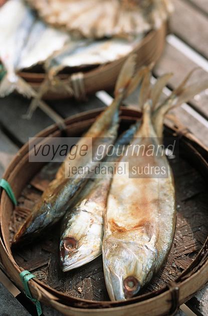 Thaïlande/Bangkok: Etal de poissons séchés dans le quartier Taa Tien au village des pécheurs