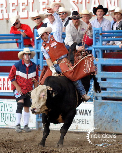 Cody Hancock scores an 88 point ride on the Beutler & Son Rodeo Company bull Shiner in short go round action at the Greeley Independence Stampede Rodeo on July 4, 2008.