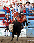 Greeley Independence Stampede 2008