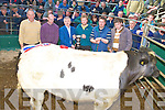 James Daly, Chairman, Mid Kerry Mart, Michael Randles, judge, Denis Sheehan, Mid Kerry Mart manager, John O'Mahony, seller, Kenneth Grant, judge, and James O'Sullivan, purchaser, pictured with the champion bullock at the Mid Kerry mart show and Sale in Milltown on Saturday. .NO REPRODUCTION FEE....NO REPRODUCTION FEE.