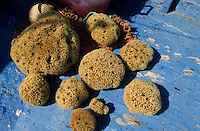 TUNISIA island Kerkennah, sponge diver, sponge is a sea animal, diver collect the spong from sea ground in 20 Meter depth, after washing and cleaning the skeleton is sold as bath sponge / TUNESIEN Insel Kerkenna, Schwammtaucher im Mittelmeer, der Schwamm ist ein Meerestier, Taucher holen den Schwamm vom Meeresboden aus ca. 20 Meter Tiefe, nach Auswaschen der Zellen erscheint das Skelett, das als Badeschwamm vermarket wird