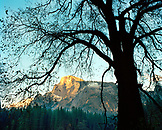 USA, California, Yosemite National Park, view of El Capitan from the valley floor