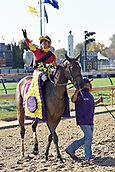 3rd November, 2018, Churchill Downs, Louisville, Kentucky, USA; Shamrock Rose with Irad Ortiz jr up after winning the Breeders Cup Filly and Mare Sprint. Churchill Downs racecourse.