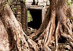 Temple Ruins 01 - Preah Palilay Temple, Angkor Thom, Cambodia