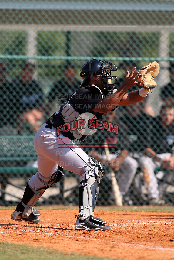 Toronto Blue Jays minor league catcher Carlos Perez (19) vs. the Pittsburgh Pirates during an Instructional League game at Pirate City in Bradenton, Florida;  October 11, 2010.  Photo By Mike Janes/Four Seam Images