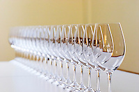 A straight row of glasses lined up for tasting - Chateau Baron Pichon Longueville, Pauillac, Medoc, Bordeaux, Grand Cru
