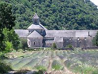 "The iconic Sénanque Abbey with lavender fields in bloom. ""Abbaye Notre-Dame de Sénanque"" is a Cistercian abbey built in 1148, and located near the village of Gordes in Provence."
