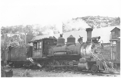 3/4 engineer's-side view of D&amp;RGW #319 in the RGS Dolores yard prior to pulling the Rocky Mountain Railroad Club excursion train.<br /> D&amp;RGW  Dolores, CO  Taken by Maxwell, John W. - 5/31/1947