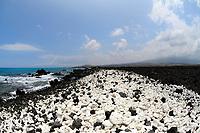 dead coral along coastline on lava rock, Mahaiulas beach, Kahekai State Park, Kailua Kona, Hawaii, The Big Island of Hawaii