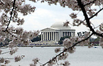Thomas Jefferson Memorial Washington DC, The Thomas Jefferson Memorial, Jefferson memorial, Presidential Memorial in Washington DC, Thomas Jefferson, American founding Father, Third President of the United States, neoclassical, Designed by John Russell Pope, Philadelphia, done, portico, Tidal, Basin, Potomac River, West Potomac Park, Washington monument, National Mall and Memorial Parks, List of America's Favorite Architecture, American Institute of Architects, U.S. National Register of Historic Places, U.S. National Memorial, Washington D.C., Ron Bennett Photography, Stock Photography, Fine Art Photography, Washington, D.C. fine art photography by Ron Bennett (c). Copyright Fine Art Photography by Ron Bennett, Fine Art, Fine Art photo, Art Photography,