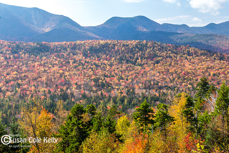 Fall foliage at the Hancock overlook in the White Mountain National Forest, New Hampshire, USA