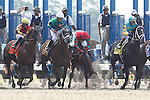 June 8, 2012. Birdrun, third from left, stumbles at the start of the 124th running of the Gr II Brooklyn Handicap, nearly losing jockey Rajiv Maragh.  He finished 9th of 11 in the race, which was won by Redeemed, Ramon Dominguez up. Belmont Park in Elmont, New York. ©Joan Fairman Kanes/Eclipsesportswire