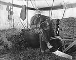 Products: Horse Harness, saw, plow and pitchfork <br />