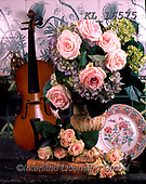 Interlitho-Alberto, FLOWERS, BLUMEN, FLORES, photos+++++,roses, violin,KL16575,#f#, EVERYDAY ,rose,roses