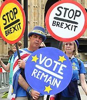 MAY 22 Brexit Protesters in Westminster