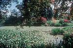 VanDusen Botanical Garden, Vancouver, British Columbia, Canada, North America, garden pond,