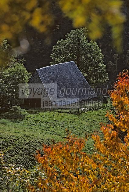 Europe/France/Auvergne/15/Cantal/Parc Naturel Régional des Volcans/Massif du Puy Griou (1694 mètres): Buron dans la vallée de Mandailles