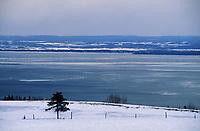 Amérique/Amérique du Nord/Canada/Quebec/Saint-Irénée : Rives du Saint-Laurent
