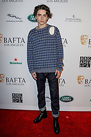 05 January 2019 - Los Angeles, California - Timothee Chalamet. the BAFTA Los Angeles Tea Party held at the Four Seasons Hotel Los Angeles.          <br /> CAP/ADM<br /> ©ADM/Capital Pictures