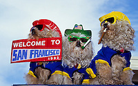 Tree puddle dogs with colorful hats, clothes and  sunglasses - with cigarets in mouth and a welcome to San Francisco sign foto, reise, photograph, image, images, photo,<br /> photos, photography, picture, pictures, urlaub, viaje, vacation, imagen, viagi, stock