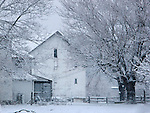 A Barn, Fence And Trees In Winter, With Snow Covering Everything Including The Limbs, Southwestern Ohio, USA : Low Res File - 8X10 To 11X14 Or Smaller, Larger If Viewed From A Distance