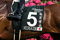 SHA TIN,HONG KONG-APRIL 30: Neorealism #5,ridden by Joao Moreira,saddle cloth for the Audemars Piguet QEII Cup at Sha Tin Racecourse on April 30,2017 in Sha Tin,New Territories,Hong Kong (Photo by Kaz Ishida/Eclipse Sportswire/Getty Images)