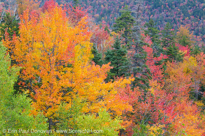 Kancamagus Pass during the autumn months along the Kancamagus Highway (route 112) which is one of New England's scenic byways. Located in the White Mountains, New Hampshire USA
