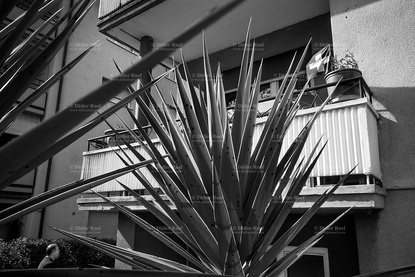 "Switzerland. Canton Ticino. Viganello. A Swiss flag flutters in the wind on a building's balcony. A lonely man walks back home. Sharp cactus' leaves. Due to the spread of the coronavirus (also called Covid-19), the Federal Council has categorised the situation in the country as ""extraordinary"". It has issued a recommendation to all citizens to stay at home, especially the sick and the elderly. From March 16 the government ramped up its response to the widening pandemic, ordering the closure of bars, restaurants, sports facilities and cultural spaces. Only businesses providing essential goods to the population – such as grocery stores, bakeries and pharmacies – are to remain open. Viganello is a quarter of Lugano. The flag of Switzerland displays a white cross in the centre of a square red field. The white cross is known as the Swiss cross. 18.04.2020 © 2020 Didier Ruef"