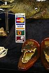 Les fermes d'élevage accueillent des touristes et vendent des mac crocs et des articles en peau de crocodiles..Crocodiles Darwin australie..