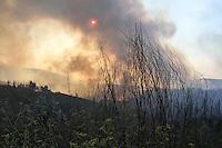 AGUIAR DE SOUSA, PORTUGAL, 01.09.2013 - INCENDIO / FLORESTA/ AGUIAR DE SOUSA - Incendio atinge floresta no municipio de Aguaria de Sousa a 35 km de Porto, ao norte de Portugal neste domingo, 01. (Foto: Raurino Monteiro / Brazil Photo Press).