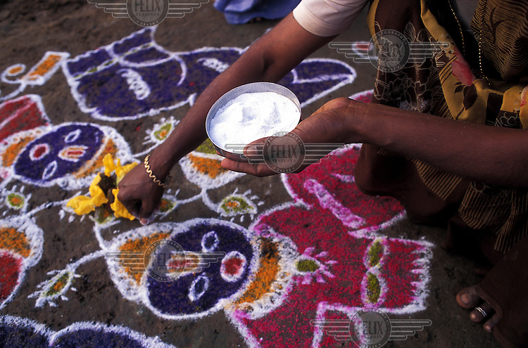 "A woman draws the outline of a ""kolam"" design infront of her home using the white paste of newly-harvested rice at start of the 3-day Pongal Harvest Festival."