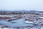 Europa, BEL, Belgien, Ostbelgien, Eifel, Eupen,Muetzenich, Deutsch Belgischer Naturpark, Naturpark Hohes Venn-Eifel, Moor, Hochmoor, Moorlandschaft, Lithalsen, Palsen, Moortuempel, Wasser, Winter, Schneereste, Dunst, Kategorien und Themen, Natur, Umwelt, Landschaft, Landschaftsfotos, Landschaftsfotografie, Landschaftsfoto, Naturschutz, Naturschutzgebiete, Landschaftsschutz, Biotop, Biotope, Landschaftsschutzgebiete, Landschaftsschutzgebiet, Oekologie, Oekologisch, Typisch, Landschaftstypisch, Landschaftspflege....[Fuer die Nutzung gelten die jeweils gueltigen Allgemeinen Liefer-und Geschaeftsbedingungen. Nutzung nur gegen Verwendungsmeldung und Nachweis. Download der AGB unter http://www.image-box.com oder werden auf Anfrage zugesendet. Freigabe ist vorher erforderlich. Jede Nutzung des Fotos ist honorarpflichtig gemaess derzeit gueltiger MFM Liste - Kontakt, Uwe Schmid-Fotografie, Duisburg, Tel. (+49).2065.677997, archiv@image-box.com, www.image-box.com]