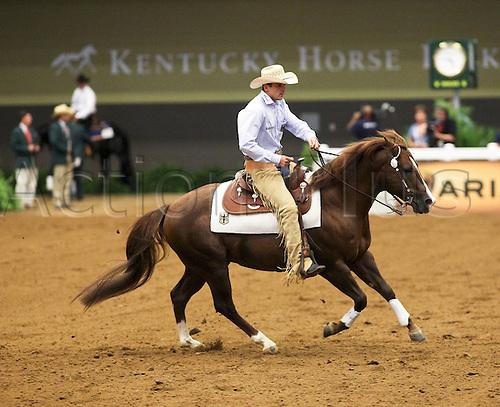 26 09 2010  Lexingon USA Kentucky Horse Park  World Equestrian Games  Emanuel Ernst ger and Legends Diamond Doc