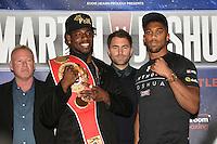 Boxing 2016-02