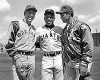 Baseball stars: Oakland A's Rick Monday, Giants Willie Mays, and A's Reggie Jackson. (1968 photo by Ron Riesterer)