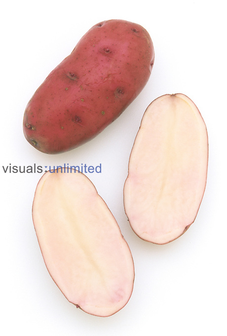 All Red' Potato variety....