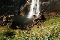 Yosemite - August 2015