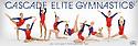 2014 - 2015 CEG Gymnastics