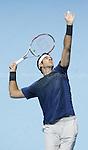 Juan Martin Del Potro - Tennis