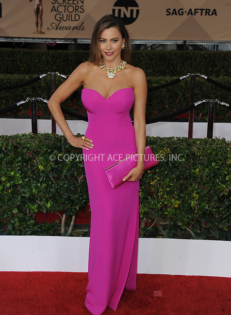 WWW.ACEPIXS.COM<br /> <br /> January 30 2016, LA<br /> <br /> Actress Sofia Vergara arriving at the 22nd Annual Screen Actors Guild Awards at the Shrine Auditorium on January 30, 2016 in Los Angeles, California<br /> <br /> By Line: Peter West/ACE Pictures<br /> <br /> <br /> ACE Pictures, Inc.<br /> tel: 646 769 0430<br /> Email: info@acepixs.com<br /> www.acepixs.com